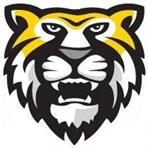 NEW Athletics Website