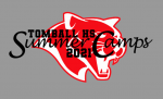 Tomball HS Summer Camps – 2021