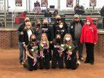 Girls Softball Gets Win Over Peters Township On Senior Night!