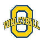 Volleyball Logo Wear