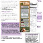 Andrean Baseball Fundraiser