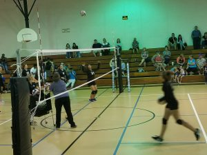 Lady Cubs Volleyball