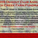 DHHS DUGOUT CLUB FUNDRAISER!