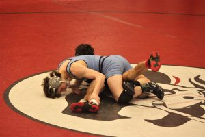 Wrestling – Best of Sectionals photos