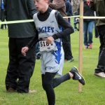 Section CC Meet - Oct 27, 2016