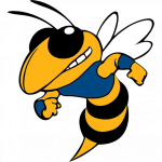 Welcome to Big Lake Hornets athletic website!