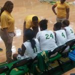 JV Lady Hornets beat Lady Shamrocks 23-19