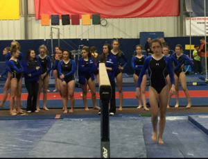 Winter 2014-2015 Gymnastics