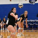 New Photo Gallery Girls Volleyball