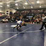 Blue Devils Wrestling Wins Dual in the School