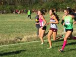 Haley Mansfield 37th at IHSAA State Meet
