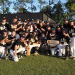 Hornet Baseball Wins District Championship