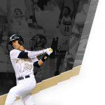 Hornet Baseball Tames the University Cougars