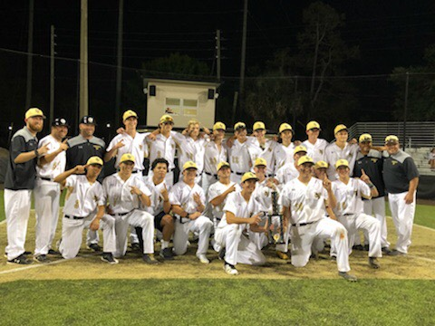 Hornets Win Catholic Challenge for the 1st Time