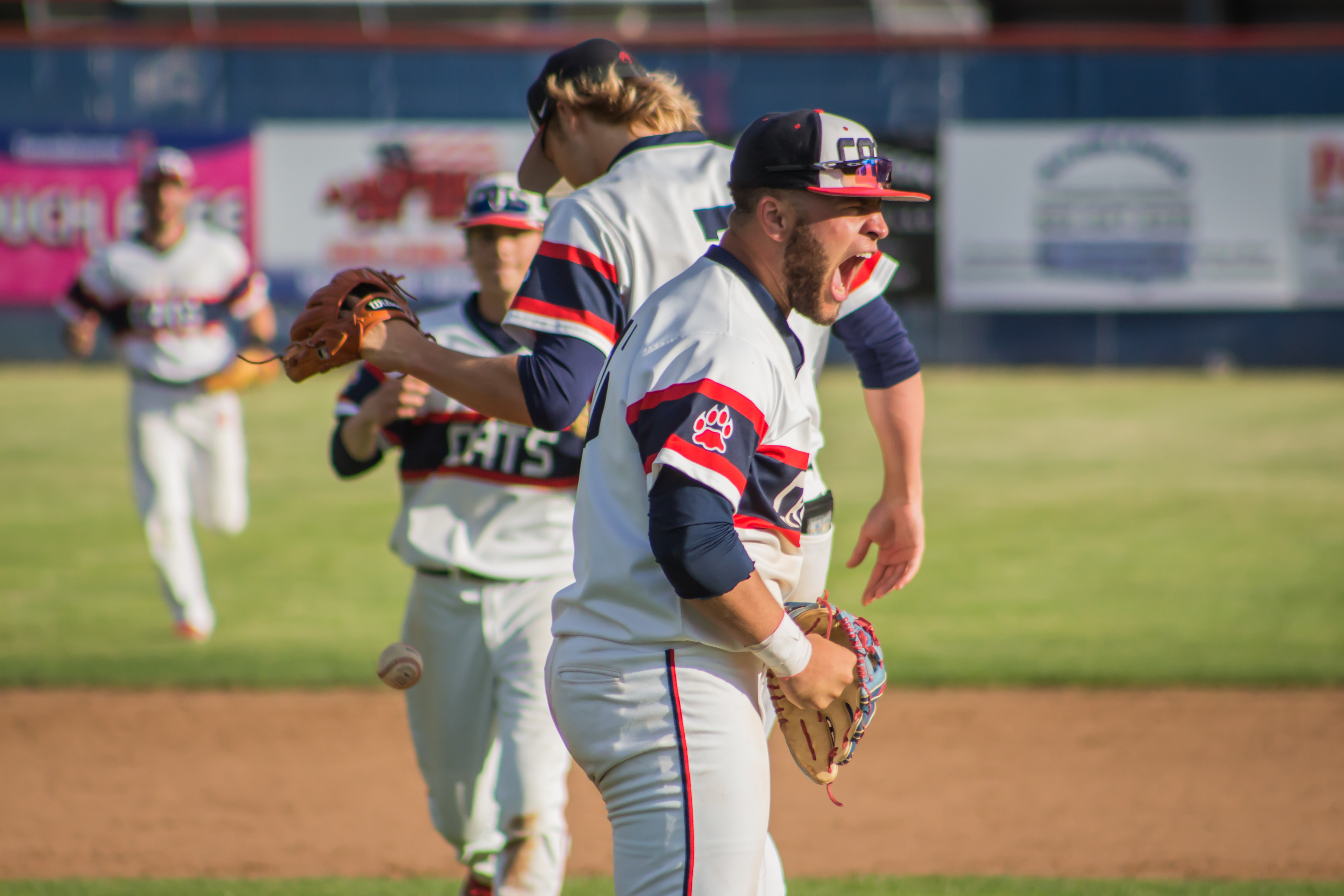Baseball Playing For the State Championship