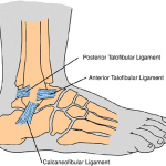 Simple At Home Ankle Sprain Prevention Program