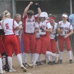 Baseball and Softball in the State Finals