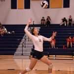 Volleyball shines v Fairview Park