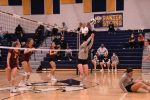 Volleyball v Avon Lake Photo Gallery