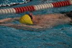 Swimmers Earn Honor Roll in Northwest District