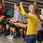 Pictures of State Volleyball 2018