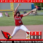 Sherman throws perfect game as Cards sweep Swan Valley