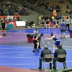 Wrestling: Whitehurst finishes 5th in state