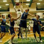 Tennessean: Ward among 20 Basketball Stars to Watch