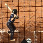 District 9-AA Softball: White House eliminates Cheatham Co.