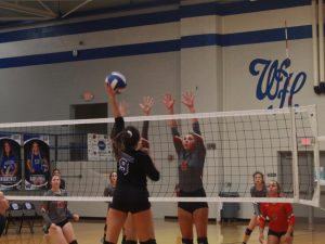 Volleyball Photos: Jo Byrns at White House