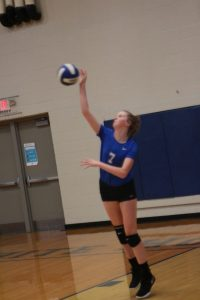 Volleyball Photos: Hendersonville at WH