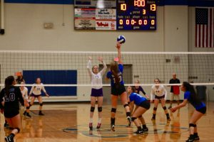 Volleyball Photos: Portland at WH