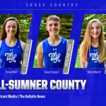 Three Devils named All-County Cross Country