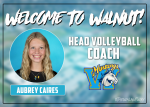 Welcome to our new Head Volleyball Coach Aubrey Caires
