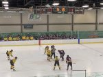 .@amherst_hockey falls to Avon 2-1