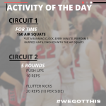Hawk Activity of the Day