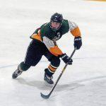 Trib HSSN- Warriors  Hockey loaded with All Stars!