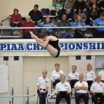 Trib HSSN- Warriors Swimmers, Divers look to content at WPIAL meets today!