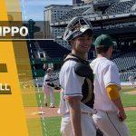 Cole DeFillippo #1 Baseball
