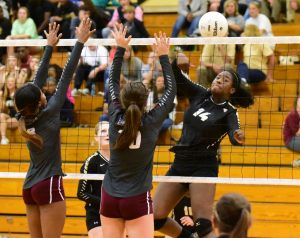 Volleyball Area Tournament (Photos By Ron Harris)