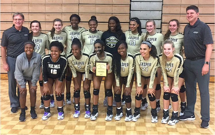 Viking Volleyball Well Represented on AHSVCA All-State Team