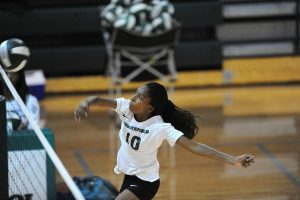 2015 Volleyball Rocks – Digs – Spikes – Blocks