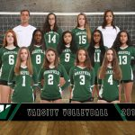 Varsity Volleyball Travels to Edison for District Playoffs – October 22