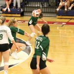 Warriors Volleyball falls to Edison
