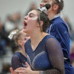 Hudson Gymnastics Qualifies For State Tournament
