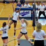 Volleyball wins thriller over Brecksville!