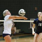 Volleyball goes unbeaten at Hudson Quad Tournament