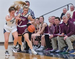 Images From Hudson Girls Basketball vs Stow