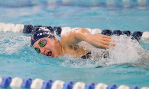 Images From Hudson Swimming
