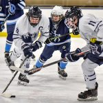 Images From Hudson Hockey vs Benedictine - Barons Cup